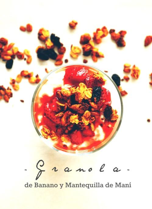Granola cover4