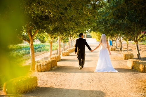 wedding-garden-walk