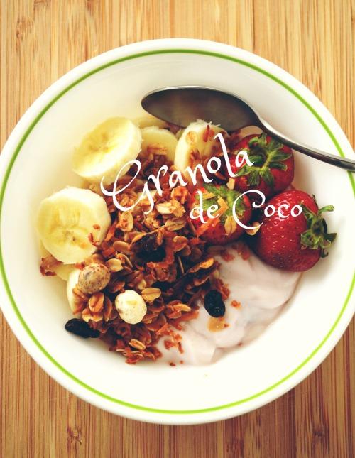 granola de coco cover